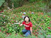 0511薰衣草森林:花