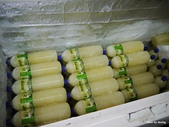 1511花蓮小吃:佳興冰果室