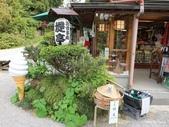 1604日本合掌村+金澤兼六園:兼六園
