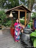 2010鹿篙咖啡莊園+鳥居喫茶食堂+喝喝茶:鳥居喫茶食堂