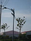 0903南鯤鯓:虱目魚電線杆