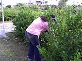 2008.10.11全球清潔日:PICT0003.JPG