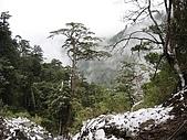南華山&奇萊南峰-賞雪 2008/02/08~09:IMG_1921.jpg