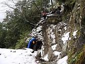南華山&奇萊南峰-賞雪 2008/02/08~09:IMG_1932.jpg