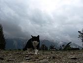 南華山&奇萊南峰-賞雪 2008/02/08~09:IMG_1899.jpg
