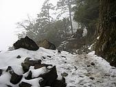 南華山&奇萊南峰-賞雪 2008/02/08~09:IMG_1923.jpg