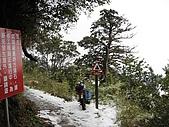 南華山&奇萊南峰-賞雪 2008/02/08~09:IMG_1902.jpg