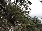 南華山&奇萊南峰-賞雪 2008/02/08~09:IMG_1906.jpg