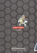 洛克人X PC:IMG_0010.jpg