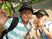 2010小腳ㄚ坪林有機營第二梯:脫殼的蟬標本很難找到的唷.JPG