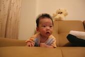 我家寶貝-宥澄成長記錄0M~4M:1618704942.jpg