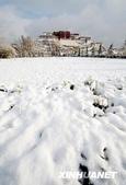 冬季雪景:20090321000925689