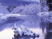 冬季雪景:200812251107152997