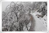 冬季雪景:normal_1201798758