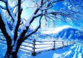 冬季雪景:12011535171941236