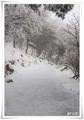 冬季雪景:normal_1201798617