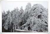 冬季雪景:normal_1201798729