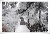 冬季雪景:normal_1201798537