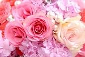 生活是充滿了幸福與快樂!!! ^^:r57  粉紅玫瑰 細.JPG
