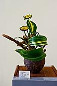 2011年3月18日於花蓮縣文化中心舉行會員聯展:LIU_2235中華花藝推廣協會花展中庭10.jpg