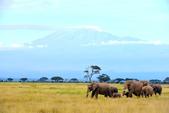 東非:kilimanjaro1_r.jpg