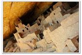 Mesa Verde 2010.09:1170059246.jpg