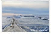 2011.03 北極:1640497638.jpg