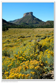 Mesa Verde 2010.09:1170059247.jpg