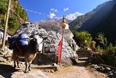 2018.11 尼泊爾EBC+Gokyo 15日健行:DSC_1522_r.jpg