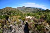 夏。雷尼爾國家公園與聖海倫火山:Helens11.JPG