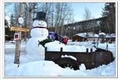 2011.03 Fairbanks:1904647238.jpg