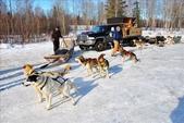 2011.03 Fairbanks:1904647258.jpg