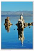 Mono Lake 2010.08:1188373729.jpg