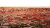 Saguaro, Meteor Crater 2010.09:1477540648.jpg