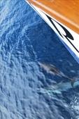 Channel Islands 2009.11:1698894273.jpg
