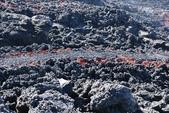 Pacaya Volcano:1743838681.jpg