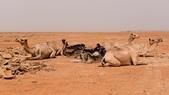 東非:Salt1_r.jpg