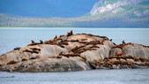 2014.07 Glacier Bay:boat14.JPG