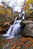 Shenandoah,仙納度國家公園:Fall10.JPG