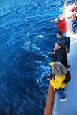 Channel Islands 2009.11:1698894274.jpg