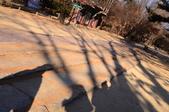 2015.01 Korea 24 hrs:Heritage2.JPG