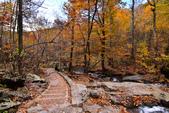 Shenandoah,仙納度國家公園:Fall6.JPG