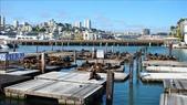 SF&17-MILE 2010.05:1792431583.jpg