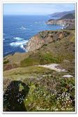 2012.03 Big Sur:1908304363.jpg