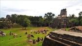 Tikal 2009.12:1096194468.jpg
