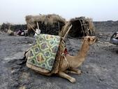 東非:blog2.JPG