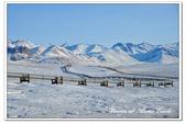 2011.03 北極:1640497636.jpg