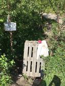 Lofoten 羅浮敦群島:hike2.JPG