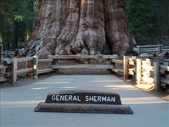 紅杉及國王谷國家公園 2009.09:1703030602.jpg