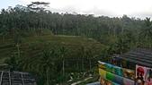 20140808-峇里島:Bali_162.JPG